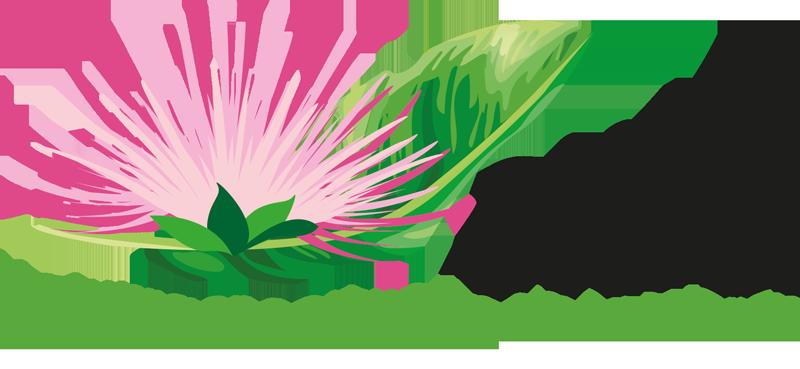 Natuurgeneeskunde Dierenpraktijk Wijchen, Nijmegen en Den Bosch. Toevoeging van Dierenarts
